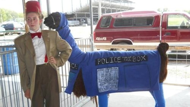 Doctor and Llama TARDIS Cosplay